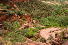 GEM_2944 (Gregg Montesi) Tags: zion national park angels landing