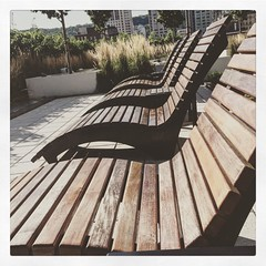 Take a load off. Roof top pools and patios soothe. #downtime #downtown #Montreal #allonsy #summerfun #summertime #quiet in the jungle (Photos by Healingmuse) Tags: instagramapp square squareformat iphoneography uploaded:by=instagram reyes