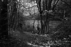 L1000080 (Rene_1985) Tags: leica q typ 116 28mm summilux 17 asph bw black white sw lost place fort zorndorf