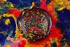 _DSC9895 (carlo.ulpiani) Tags: carloulpiani d90 ferrofluid ferro fluid nikon pfr photography carlo color art