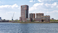 Lloydkade (R. Engelsman) Tags: architecture building buildingcomplex skyline bricks appartments water waterfront lloydkade schiemond rotterdam rotjeknor 010 nederland netherlands holland