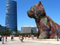 Puppy y la Torre Iberdrola.Bilbao. (lameato feliz) Tags: bilbao bilbo tp torreiberdrola puppy torre flores