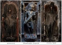 """Koshta Deities @ Lalgudi Saptharishvarar Temple - Tiruchirapalli. (Kalai """"N"""" Koyil) Tags: nikon d 5200 18140mm tokina 1116mm 2015 lalgudi saptharishwarar temple thavathurai thiruthavathurai pandezhuvar ammaiyappar veenaiyenthiya thevar pichai koshta deities trichirapalli tamilnadu southindiantemple architecture"""