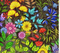 Secret Garden -005 (ronniesz) Tags: zentangleinspiredart adultcoloring derwentinktensepencils finelinecoloredpens prismacolorpencils patterns penandink nature flowers whimsy