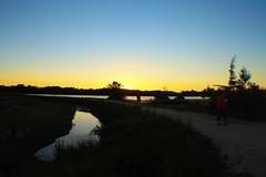 sun set (f.tyrrell717) Tags: sun set whit bogs pine barrens