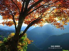 DAO-86893 (Chen Liang Dao  hyperphoto) Tags:   taiwan