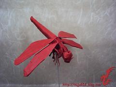Dragonfly (Rydos) Tags: kamiyasatoshi kamiya satoshi dragonfly origami art paper paperfold paperfolding hanji red korean koreanpaper dragon fly
