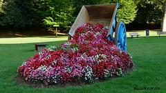 La charrette fleurie (Barnie76@ ,) Tags: charrette fleurs flowers pavilly fleurie seinemaritime normandie panasonicdmcgx80