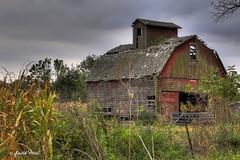 Tiskilwa Corn Crib (david.horst.7) Tags: farm rural decay crib barn corncrib rustic weathered