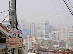 Ihwa Mural Village (Travis Estell) Tags: ihwa ihwamuralvillage ihwadong jongno jongnogu korea pleasebequiet quietplease republicofkorea seoul sign southkorea