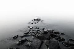Flut, Nordsee (ptrckmayer) Tags: nordsee wasser water steine stones nebel black white flut kste strand sonyalpha sony longexposure landscape langzeitbelichtung landschaft horizont