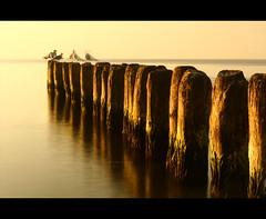 (krzysztofbobrowicz) Tags: sea sun canon 350d rebel xt long exposure time bokeh filter nd density neutral