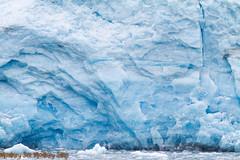 IMG_6361.jpg (MonkeySeeMonkeySnap) Tags: old blue cold ice nature water alaska boat ancient ak glacier seward aialik