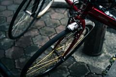 ALBERT HALL (lenslet) Tags: street bicycle tokyo shinjuku xpro1 voigtlndernokton35mmf14sc