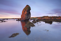 The Kip, Coldingham (Stuart Stevenson) Tags: morning sea seascape colour reflection clouds sunrise photography dawn scotland early rocks tide earlymorning redrock costal subtle seastack sidelight scottishborders clydevalley canon1740mm thanksforviewing canon5dmkii stuartstevenson thekip stuartstevenson coldinghamnorthsea