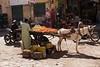 street trader - Aswan