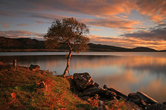 Loch Duntelchaig. (Gordie Broon.) Tags: longexposure autumn light nature clouds fence reflections lan