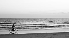 Pedales en la playa 2 (dom dorellana) Tags: boy shadow blackandwhite bw españa blancoynegro beach bike bicycle silhouette contraluz andalucía spain peace ride dom daniel bicicleta sombra playa dani calm bn riding serenity bici form silueta shape cádiz niño backlighting zahara zaharadelosatunes tranquilidad orellana dorellana domdorellana