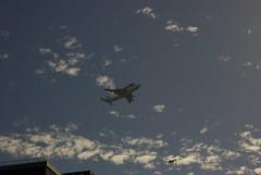 Endeavour IMGP5503 (I am Mike's photos) Tags: sacramento spaceshuttle endeavour lastflight