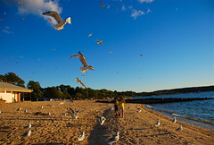 You must seek happiness to find it..... (ineedathis, Everyday I get up, it's a great day!) Tags: grandchildren twins justin eleni siblings family sunset bluesky clouds moon contrail beach sea sand love waves nikond80 huntington asharoken longisland newyork seagulls