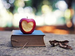 Todo est en los libros (Guillermo Carballa) Tags: light leaves bokeh olympus aple boks duelos