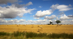 England as seen from a train (Eleventh Earl of Mar) Tags: travel england rural landscape farming harvest rail hay agriculture bales pastoral september2012uktravelengland