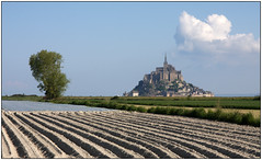 Les labours du Mont. (diaph76) Tags: france landscape earth terre agriculture monuments paysage plowing montstmichel furrows labours sillons