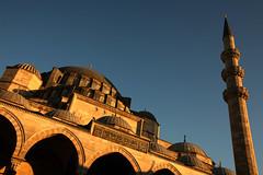 Suleymaniye Mosque 26 (David OMalley) Tags: architecture turkey interior muslim islam trkiye istanbul mosque arabic east arab dome sultan ottoman oriental middle orient cami grad mustafa madrassa sinan mehmet turkish masjid allah turk sleymaniye islamic tahir camii mihrab suleymaniye muhamed eminonu grandiose mimar atik