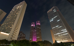 The Tokyo Metropolitan Government Office Building with the Pink Ribbon (Flickr collection by Getty images) (Yuripere) Tags: city sky plant japan horizontal architecture modern night skyscraper outdoors photography citylife nopeople illuminated  government    governmentbuilding    tokyoprefecture capitalcities traveldestinations     buildingexterior lowangleview colourimage       traditionallyjapanese