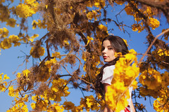Yellow Spring (AnnuskA  - AnnA Theodora) Tags: flowers portrait woman selfportrait tree nature colors beautiful yellow spring seasons ip brazilian brunette iptree