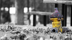 Hydrant Selective Colors (07victor84) Tags: selectivecolors hydrant yellow objects amateur bridgecamera closeup