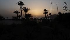 DSCN2770 (dbohaty) Tags: agadir morocco almaghrib