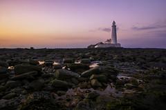 St Marys lighthouse (mcfoto.co.uk) Tags: newcastle bay lighthouse marys st tyne whitley sunswt beach stone stones rock rocks water sea ocean sunset sunrise