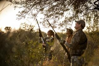Argentina Dove Hunt - Small 22