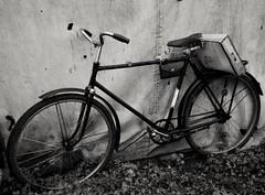 #bike #run #summer #road #love #velo #old #photo #history #classic #retro #street #memories (helenarojas) Tags: summer street old love memories run history velo bike retro classic photo road