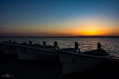 Stagno di Cabras (--marcello--) Tags: sunset cabras stagno sardegna sardinia italy fishingboats boats barche landscape