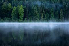 As I Am (brentgoesoutside.com) Tags: 2016 reflection brentgoesoutside calm canoe d610 fog forest july lake landscape morning mthood nationalforest nature nikon oregon still summer travel triliumlake water