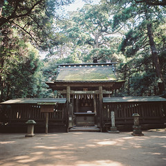 R1-34 -   (redefined0307) Tags: zenzabronicas2 zenzabronica mediumformat ibaraki japan kashimashrine shrine architecture heritage forest travel religion