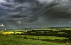 Vor dem Regen (s.lang534) Tags: natur nature feld grasland wolken cloud dunkel wald sturm storm dark august grn sommer summer
