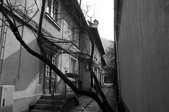DSC_2083_1 (I am only Claire) Tags: romania bw brasov