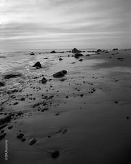 Dusk at Aquinnah (DKAIOG) Tags: 4x5 blackwhite chamonix045n2 coastline goerzroberstonatar305mmf9 island landscape largeformat marthasvineyard pyrocatmc tmax100 film monochrome