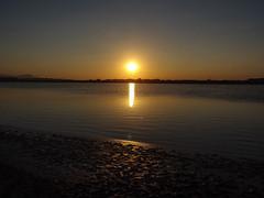 Cagliari Stagno del Poetto - sunset - coucher de soleil (robyjohn10) Tags: sardaigne mare hx9v sardegna spiaggia sun sony sardinia blue water cagliari sunset stagno pond