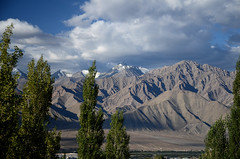 The Stok & Great Himalayan Range (dave beere) Tags: india ladakh buddism buddah monastery gompa