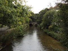 River Avon Salisbury Wiltshire (Sweet Mango 1965) Tags: salisbury 2016 river avon wiltshire landscape