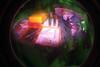 Medical Supplies Multiple Exposure (rpennington9) Tags: equipment surgical medical lomo lomography lomographic fisheye lomofisheye lomofisheye2camera lomofisheyeiicamera lomographiccameras film 35mm kodak kodakgoldmaxfilm iso400 colorsplashflash multipleexposure