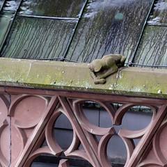 Strasbourg-2016-02-13-250 (Sambaphi) Tags: strasbourg alsace france cathdrale cathedral notredame gargouille gargoyle