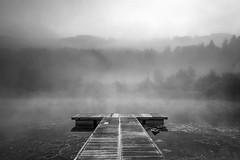 Foggy Morning (pixadeleon) Tags: fischersteg dttnauerweiher nebel herbst weiher dttnau holzsteg wasser jetty lake water fog autumn wood forest black white schwarz weiss