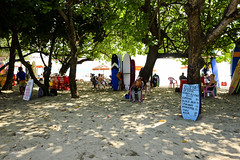 Tree shade at the beach (A. Wee) Tags: kuta bali  indonesia  beach stand tree