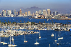 San Diego Bay (binzhongli) Tags: towndown sandiego shelterisland cityscape harbour bay yacht california southerncalifornia canon6d