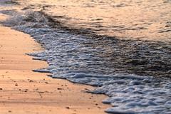 Last night at the beach (Rndaja) Tags: beach strand evening abend balticsea ostsee rand lbeckerbucht htu niendorf lnemeri bayoflbeck canonef100mmf28lmacroisusm